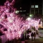 クリスマスイルミネーション・夜景の場所をご案内します。お台場から神戸のモザイクなど。。ご参考に