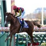 競馬有馬記念オールフェーブル2着に8馬身差の1着。圧倒的強さ。でも今日で引退。