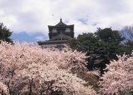 """2014年""""桜""""開花予想時期、花見の名所、場所、ランキングを公開します。梅の名所も同時に公開します。(北陸 甲信越)"""