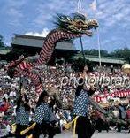 おくんち(くんち)長崎2014。日程、場所,踊り町、演し物、屋台、お勧めのお店紹介。尚今年はコッコデショは出ません。