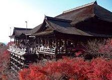 2014紅葉情報。関東地方、箱根、日光。京都の見所、見ごろ。都心からは高尾山がお勧め。
