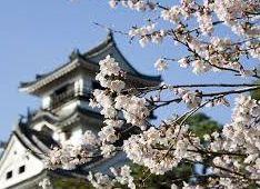桜、花見の開花時期、場所、名所、住所、アクセス2015年版。中国、四国、広島、岡山。